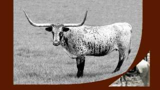John Simpson Chisum Cattle King of the Pecos
