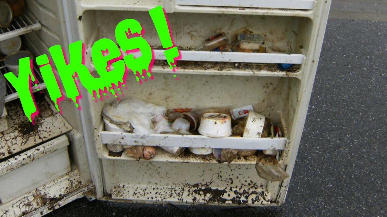 How To Prevent Mold In Your RV Fridge!