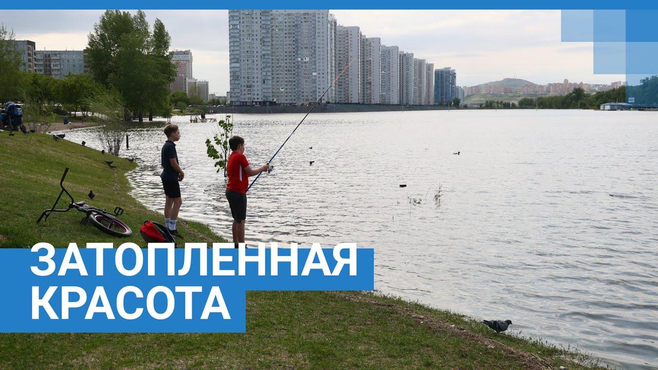 Затопленные красоты Красноярска | NGS24.ru