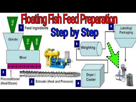 On Farm Floating Fish Feed Preparation Method | Step By Step Process