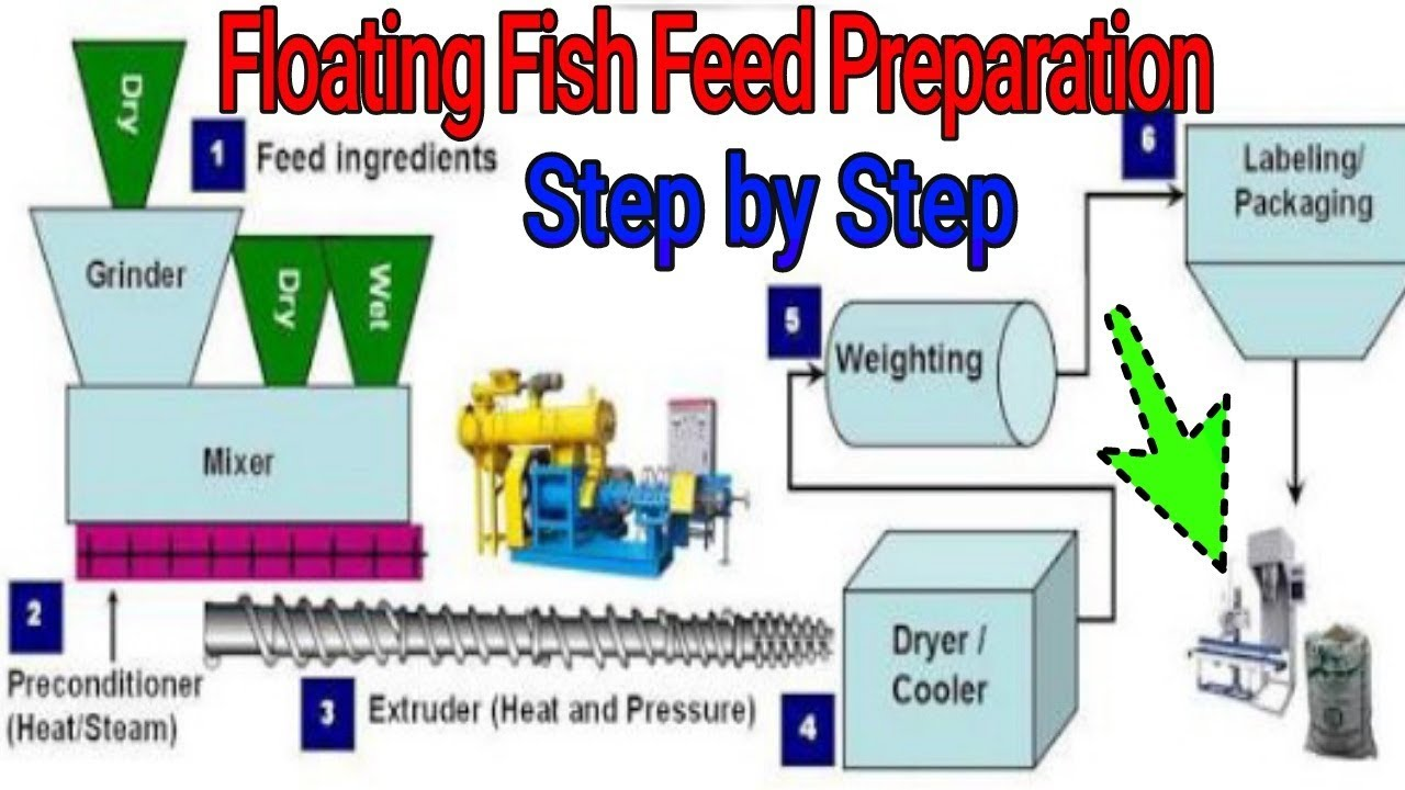 On Farm Floating Fish Feed Preparation Method   Step By Step Process