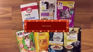 Кот выбирает корм | Что вкуснее Whiskas или Sheba?