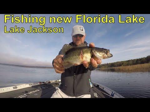 How I Break Down A Random Florida Lake !!!