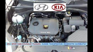 Kia Sportage/Hyundai Tucson: какие технические жидкости заливать/доливать