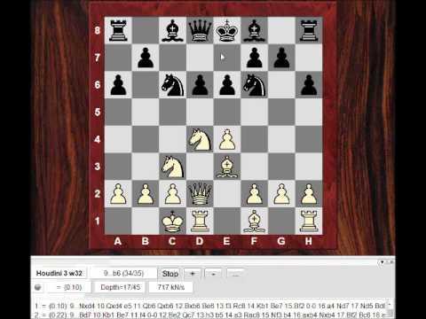 Dr John Nunn : John Nunn vs John Fedorowicz- Hoogovens 1991 - Sicilian Richter-Rauzer