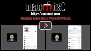 Managing Apple Music iPhone Downloads (#1516)