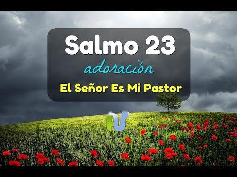 SALMO 23 CANTADO EL SEÑOR ES MI PASTOR en Español de DANILO MONTERO Cover