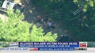 Bulger witness found dead