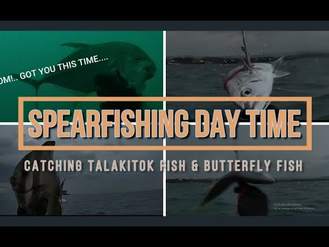 Spearfishing Daytime, Practice Day 2, Catching Talakitok & Butterfly Fish.