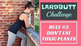 DON'T EAT TOXIC PLANTS! // Rule #3 (Plant foods that make you fat & sick...) #lardbuttchallenge