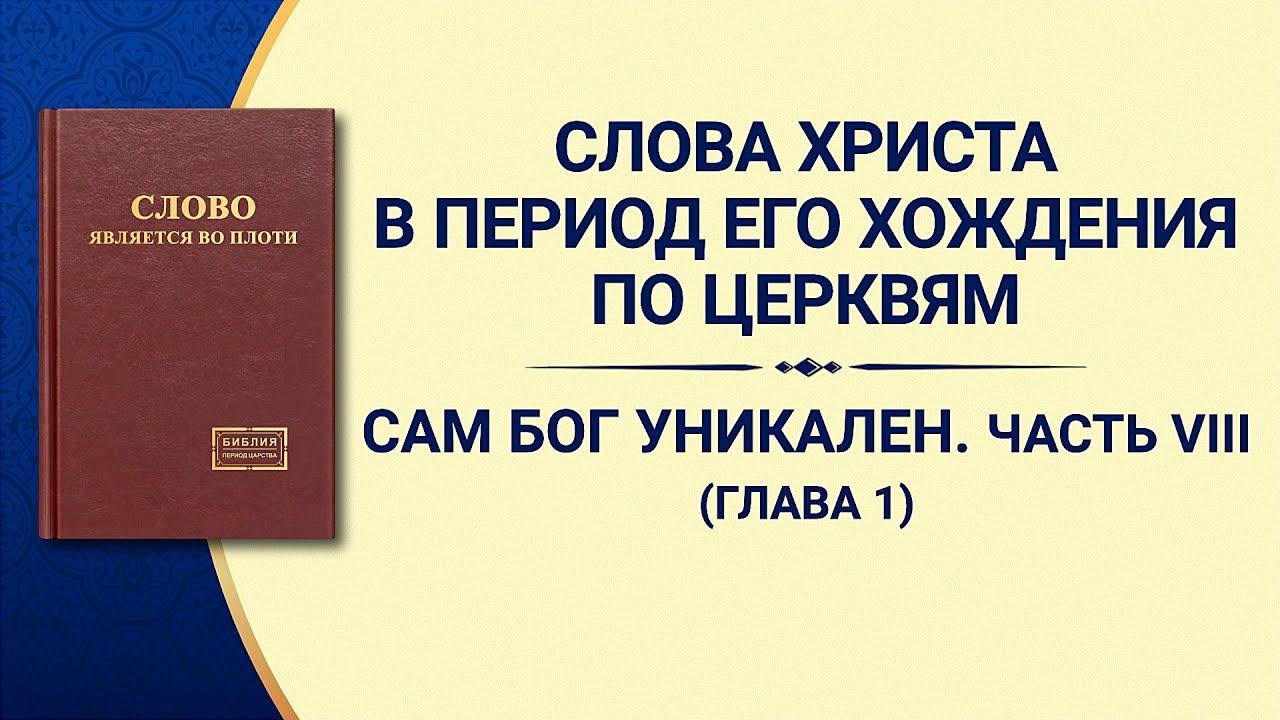 «Сам Бог уникален. Часть VIII Бог — источник жизни для всего сущего (II)» Глава 1