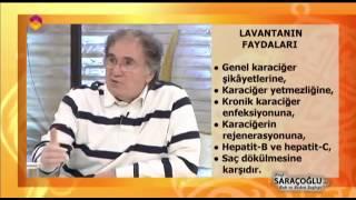 Lavantanın Faydaları ve Lavanta Kürü - DİYANET TV