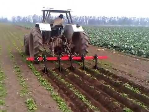 Cultivadora aporcadora hortalizas inamec youtube for La zanahoria es una hortaliza