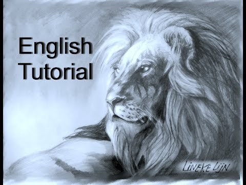 LION drawing in graphite for beginners easy tutorial