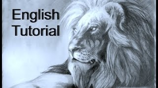 How to draw a Lion / animal drawings / #16