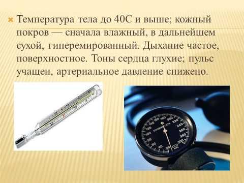 Тепловой удар, неотложная помощь при тепловом ударе для для фельдшеров скорой медицинской помощи.