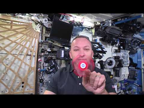 NASA astronaut uses popular fidget spinners to test Newton's law of motion
