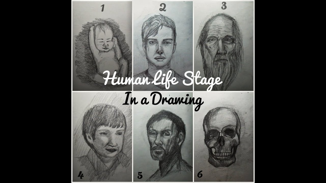Human Life Stages In a Drawing - YouTube