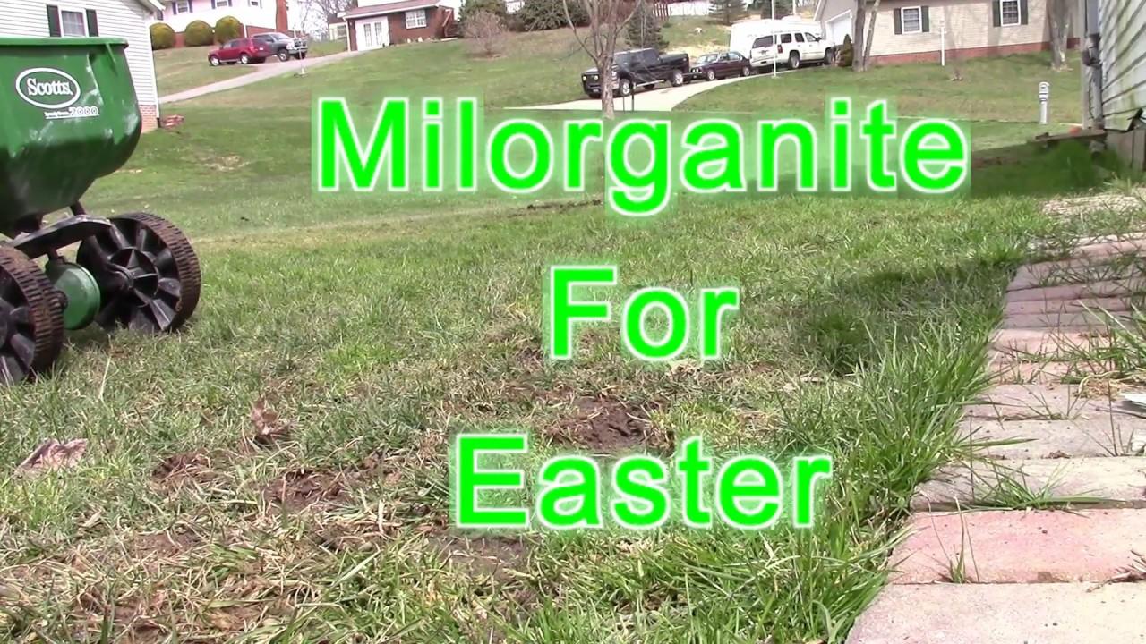 Milorganite For Easter:: superlike club