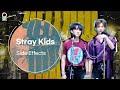 [LIVE] 스트레이 키즈 Stray Kids - 부작용(Side Effects) / 산들의 별이 빛나는 밤에