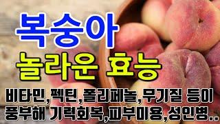 [#복숭아효과] 복숭아의 놀라운 효능 10가지 (비타민…