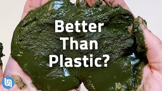 Why Algae Could be the Plastic of the Future