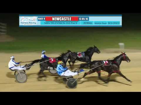 NEWCASTLE - 13/05/2016 - Race 9 - NBN TELEVISION THREE YEAR OLD PACE