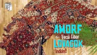 Amorf Lovagok km. Vécsi Tibor - Indián (DjSuperStereo Remix)