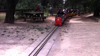 Trains at Wagga Wagga's Miniature Railway