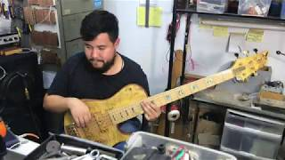 D'Mark Bass Omega | Danilo Macapá | D'Mark Guitars
