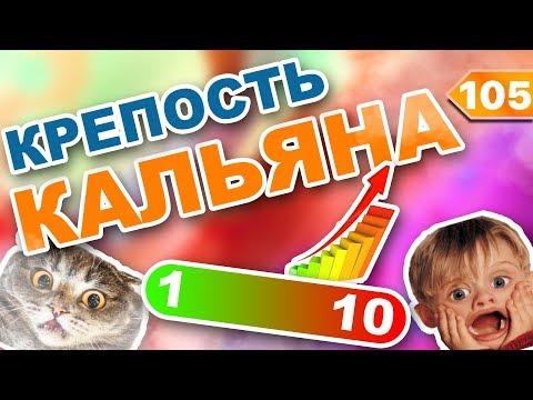 #105 Крепость КАЛЬЯНА от 1 до 10! | HookahKing