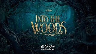 INTO THE WOODS - No One is Alone (KARAOKE) - Instrumental with lyrics on screen [Solo]