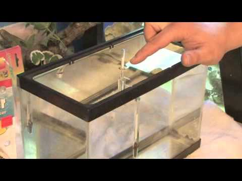 How To Use A Hydrometer For Fish Tanks