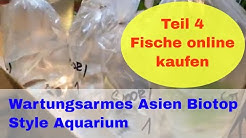 Aquarienfische online kaufen Erfahrung & Bewertung mit Zooshop-EU und Garnelen Direkt