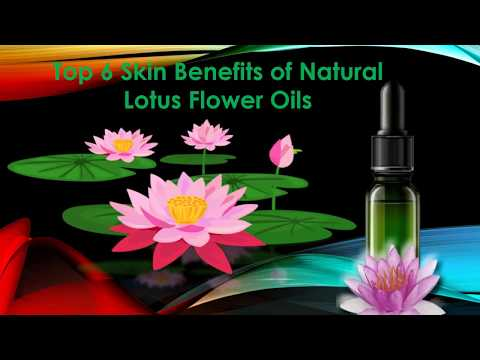 top-6-skin-benefits-of-natural-lotus-flower-oils