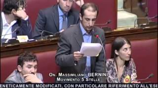 """1/7/2013 Massimiliano Bernini """"Ecco perché no agli Ogm"""""""