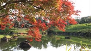 愛知県緑化センターの紅葉 2016   豊田市