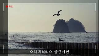 소니 미러리스로 촬영한 풍경사진