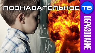 Уничтожение русских школьным образованием (Илья Михнюк)