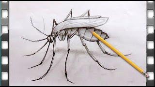 como desenhar um mosquito | como desenhar um mosquito passo a passo