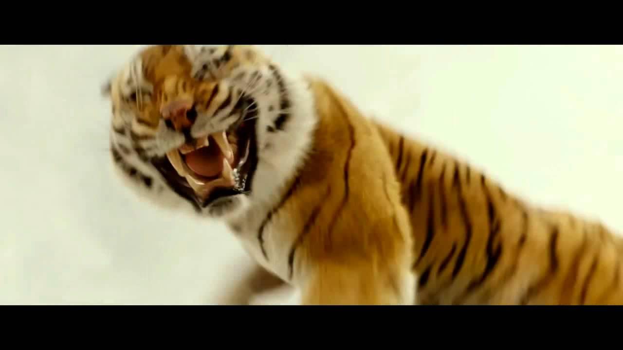 Анимашки дружбе, гифка тигр рычит