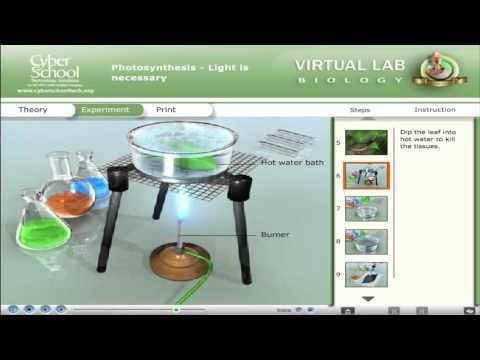 CSEC Biology Virtual Lab - Photosynthesis