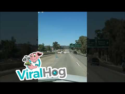 Angie Ward - Plane Lands on Freeway, Merges Perfectly!