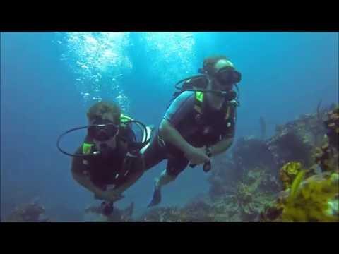 SUPER PLONGEE AVEC LES REQUINS TAUREAU A CUBA!!!AWESOME DIVE WITH BULL SHARKS IN CUBA