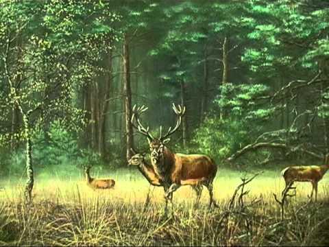 Wildlife Painting 4, Red deer - YouTube