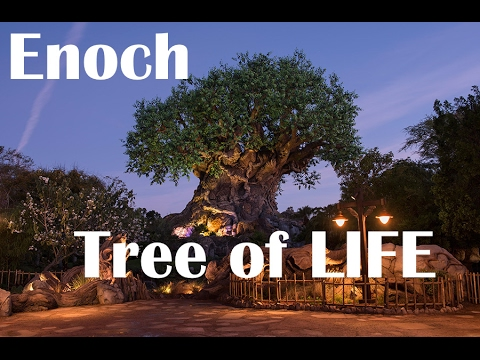 Ancient Book Of Enoch - Part 5 - Tree Of Life, Millennial Period, Ken Johnson