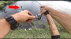 FIshing City Ponds In Orlando FL