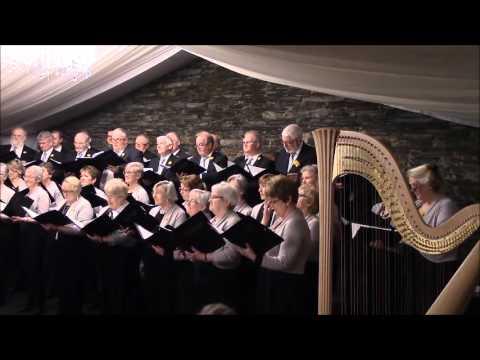 St. David's Day Concert at Cardigan Castle part 3