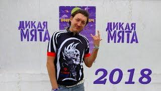Миша Куралес. Фестиваль Дикая мята 2018.