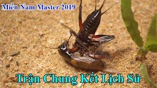 Phim Tài Liệu - Tập 15 - Trận Chung Kết Hay Nhất Lịch Sử Đấu Dế - Giải Miền Nam Masters 2019